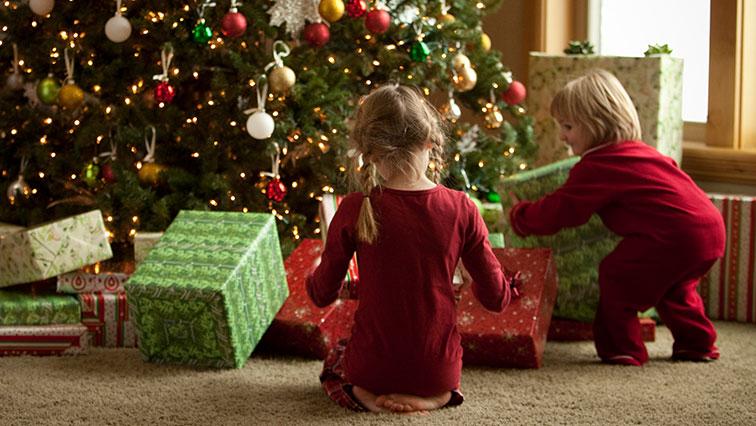 Živý nebo umělý vánoční stromeček? Volte kompromis